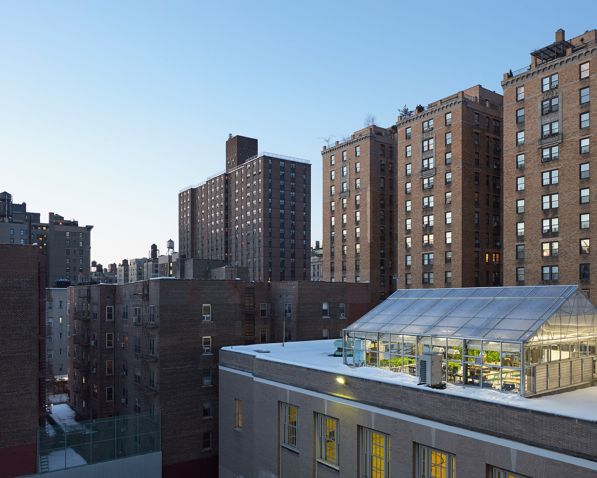 PS333 Green Roof, Location: New York City